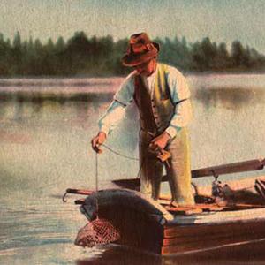 Kraftfiske-bat